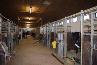 Pferdehof Aitrachaue